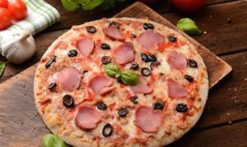 garnitures p 226 te 224 pizza